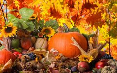 The Importance of Thanksgiving – Despite Everything